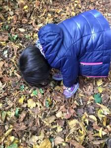 autumnal-058