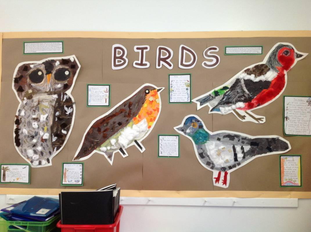 2018 Calendar Year : Year one s birds displays eleanor palmer primary school