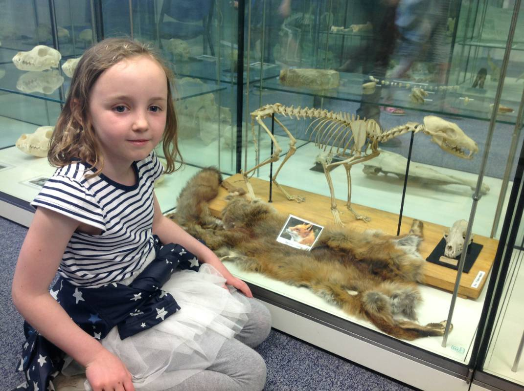 year 1 visit the royal veterinary college