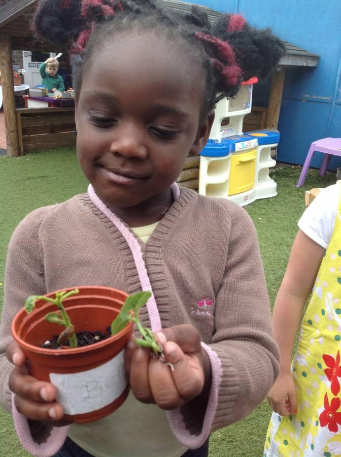 Look How Much We Ve Grown Eleanor Palmer Primary School