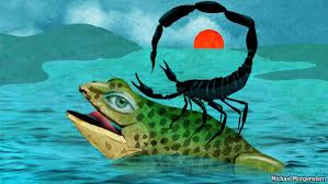 the story of the frog and the scorpion