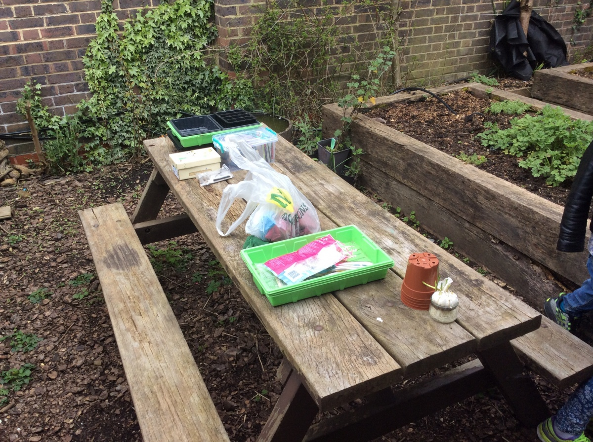 the start of our gardening topic eleanor palmer primary